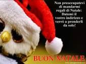 Immagini natalizie Divertenti gratis
