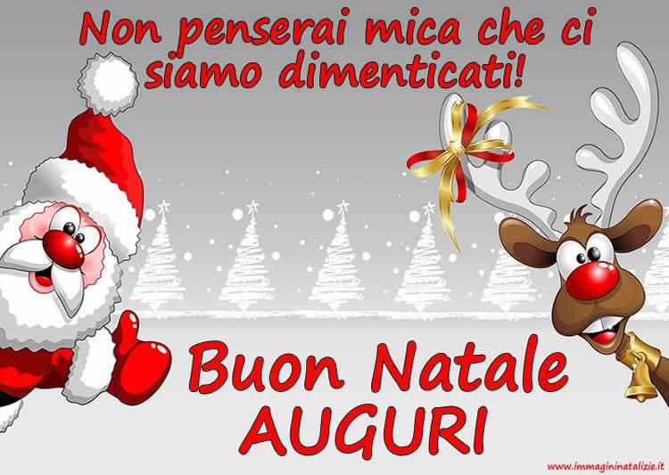 Foto Di Natale Simpatiche.Le Piu Belle Immagini Di Natale Divertenti Da Condividere