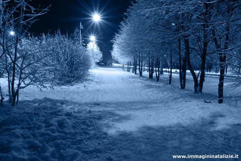 Neve natalizia
